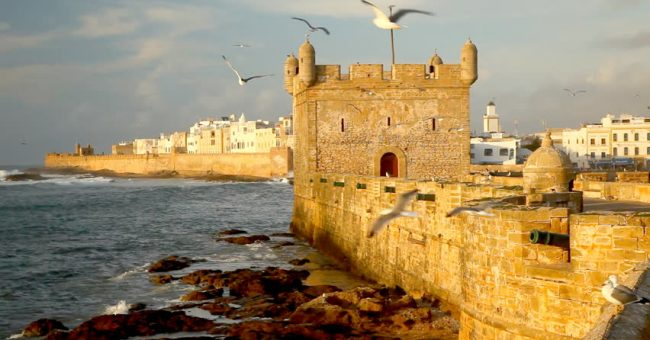 essaouira excursion17