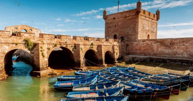 essaouira excursion16